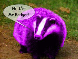 Mr Badger says Hello